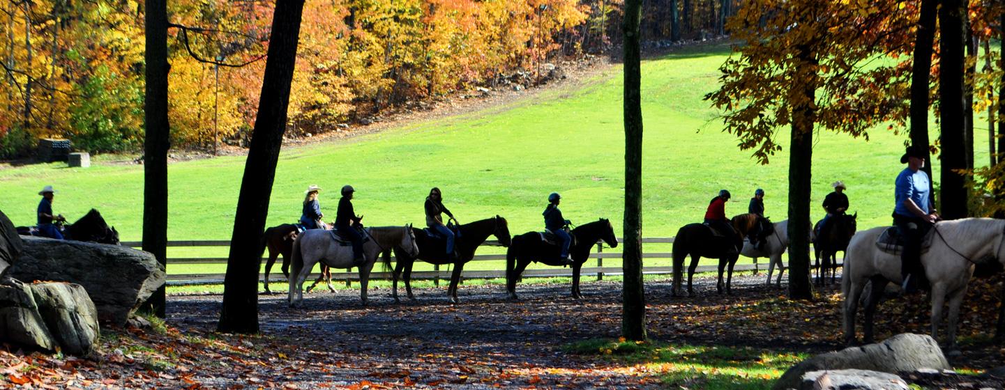Unlimited Horseback Riding