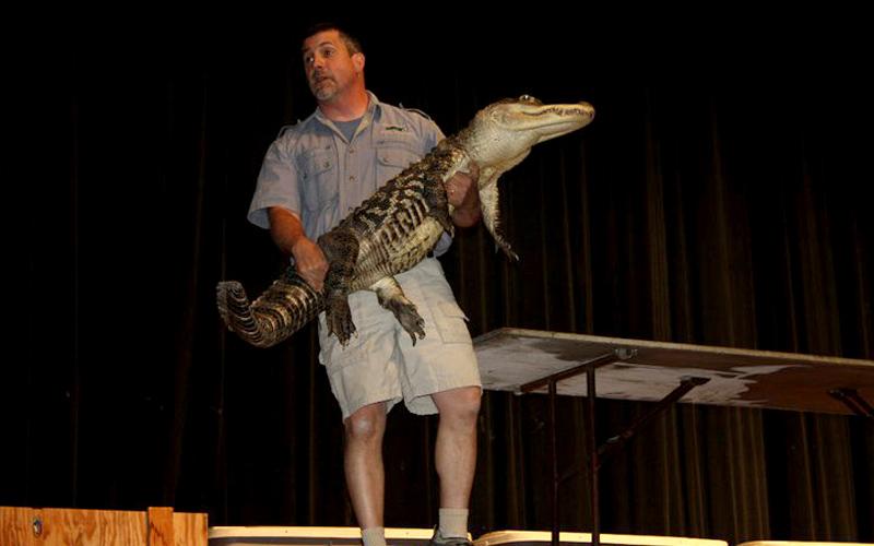 Live Wildlife Animal Shows