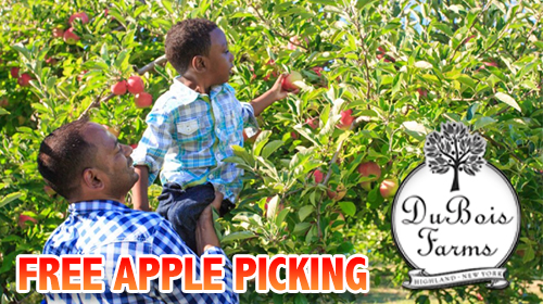 FREE Apple Picking father son